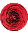 Glas viltjes met rode roos 10x
