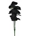 Bruidsboeket 12 zwarte rozen