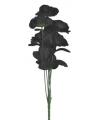 Bruidsboeket 6 zwarte rozen