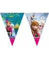 Kinderfeestje Frozen vlaggetjeslijn 2 meter