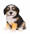 Tuinbeeldje Berner Sennen hondje 15 cm