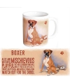 Grote theemok Boxer