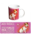 Grote theemok Jack Russell