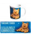 Grote theemok Yorkshire Terrier