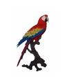 Luxe tropische vogel beeld papegaai 70 cm