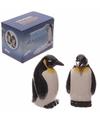 Peper en zout stelletje pinguins