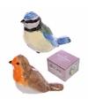Peper en zout stelletje vogeltjes