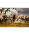 Kinder placemats olifantjes