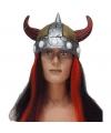 Helm viking met haar